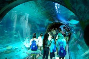 Aquarium planned for Concord Mills