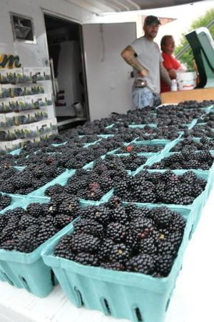 Blackberry festival in 2012