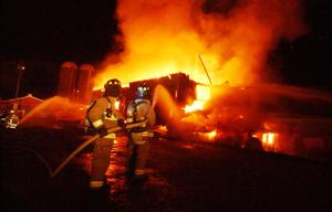 80 cattle saved in barn fire