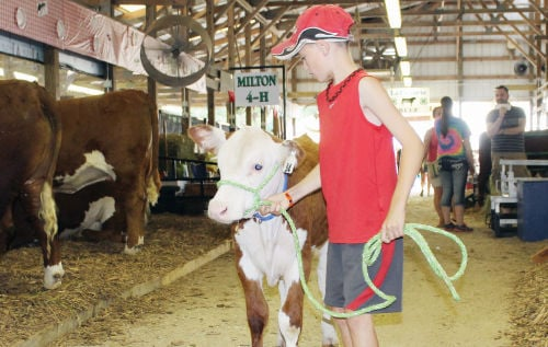 Hot, muggy start to Rock County 4-H Fair