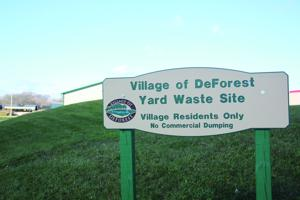 Village casts focus on brush dump
