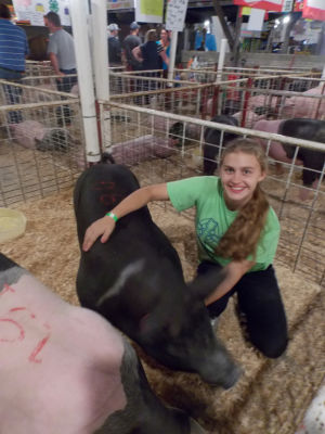 Dodge County Fair market hog