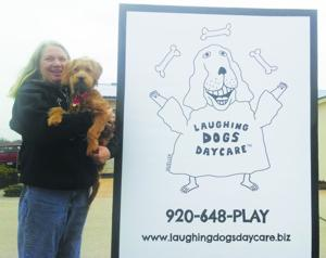 Laughing Dogs Daycare