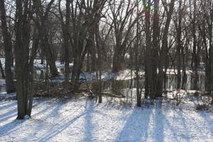 Winter scene?