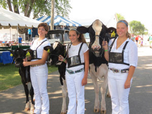 Dodge County Fair entrants