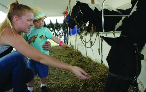 Fun at Wisconsin Farm Tech Days