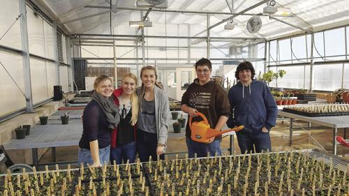 FFA Week: Annual SPHS greenhouse sale scheduled for May