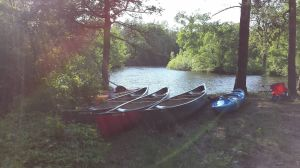 Windsor Cub Scout Troop 155 Recently Went On Four-Day Canoe Trip