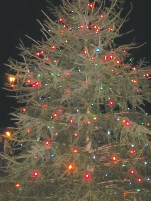 Deerfield Tree Lighting