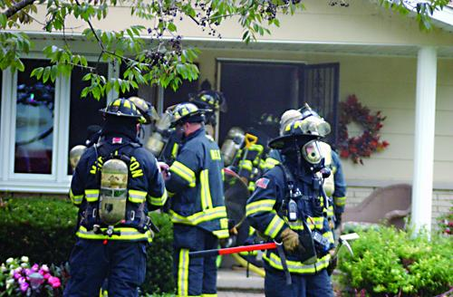 Pet cat dies in basement fire