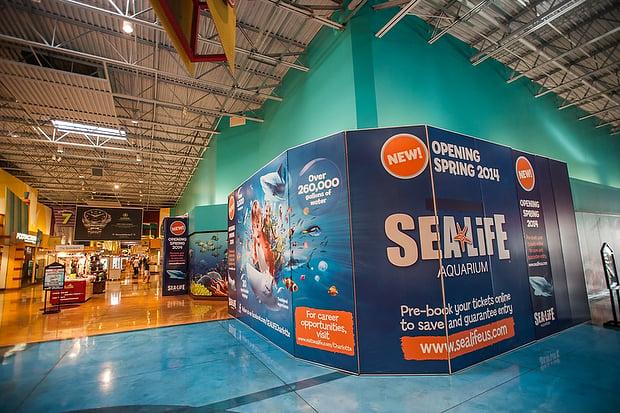 Concord Sea Life Aquarium To Open Feb 20 News: concord mills mall aquarium