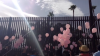 RAW VIDEO: Breast cancer survivors, supporters march to border for Binational Cancer Awareness Day