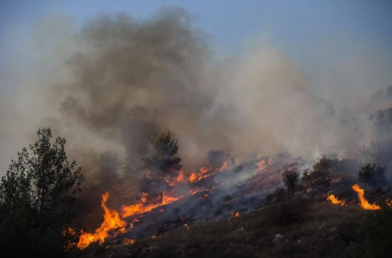 Fires in Israel destroy homes, force evacuations