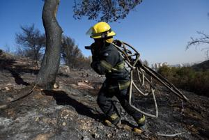 With the wildfires tamed, Israelis seek answers