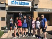<p>BBYO teens participate in J-Serve, a day of community service.</p>