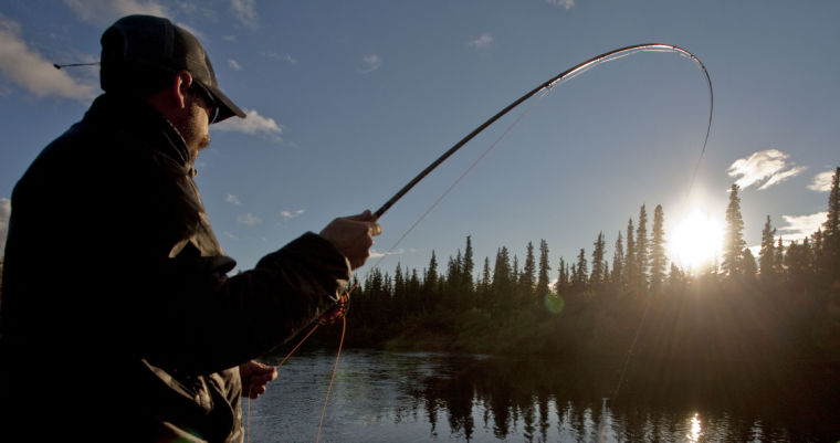 Fish on film jackson hole news guide events for Fly fishing film festival