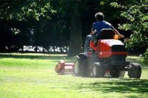 Wise Lawn Maintenance