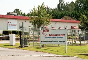 TOWNSEND PLANT
