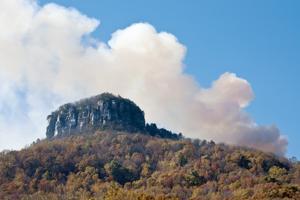 W1109_mountain_burns.jpg
