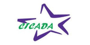 Central Texas Council on Alcoholism and Drug Abuse (CTCADA)