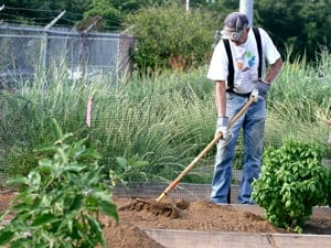 Group of gardening elite run education programs, volunteer in county