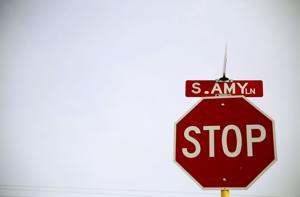 Amy Lane