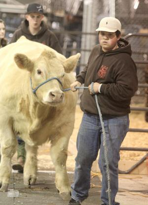 Killeen Junior Livestock Show