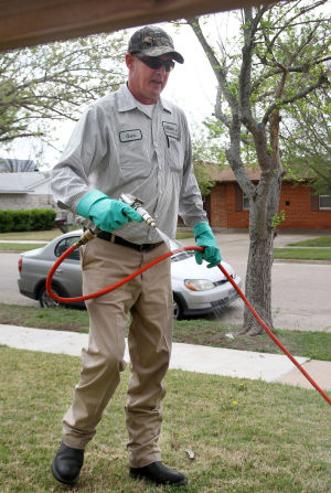 Pest Control in the Spring