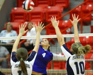 Cove Swept by Flower Mound in Area Round