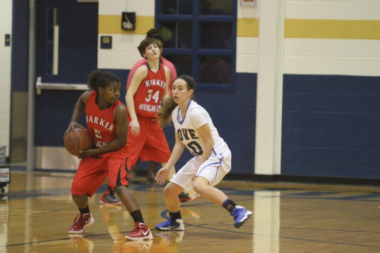 GBB Cove v Heights 51.jpg