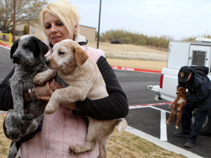 Harker Heights Pet Adoption Center opens Monday