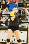 VOLLEYBALL: Carpenter, Hornets show potential for big things
