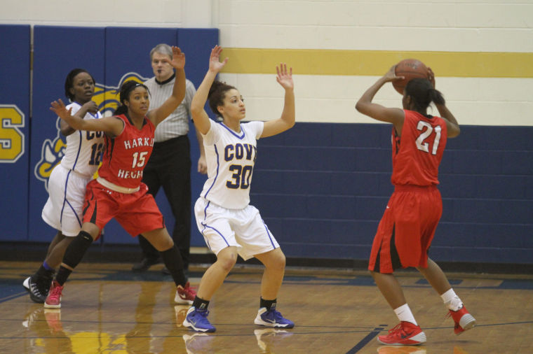 GBB Cove v Heights 52.jpg