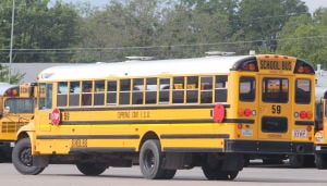Copperas Cove Buses