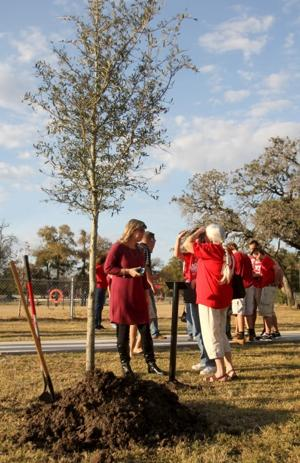 Tree Dedication
