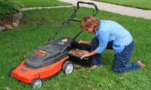 Fall Lawncare: Shredding fall leaves with a mower and spreading a layer over the soil in the garden will conserve moisture and insulate the roots of perennial plants. - Photo by Courtesy Of Melinda Myers