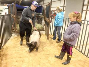 Killeen Junior Livestock Show