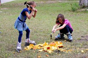 PumpkinCompost(3).jpg
