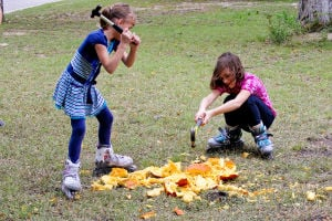 PumpkinCompost(3).jpg: Eight year old McKaylea Woods (left) and her sister, Emma (10) use hammers to break apart a pumpkin to use for composting. - Photo by Jodi Perry