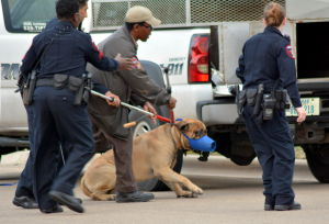 <p>Killeen police officers and an animal control officer take into custody a dog that attacked three people on Pennington Avenue in Killeen on March 1, 2014. A 2-year-old boy died of his wounds and an 8-year-old girl was hospitalized.</p>