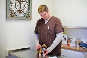 Stagecoach Pet Hospital (4)