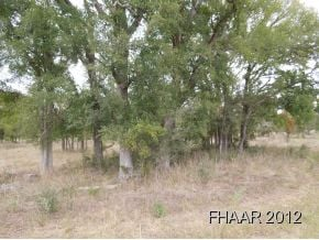 Land for sale in Burnet County. This tract of land