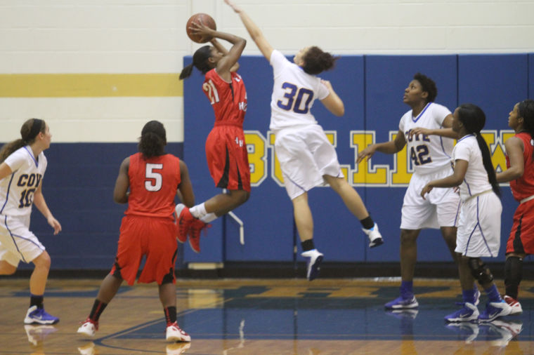 GBB Cove v Heights 55.jpg