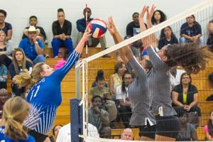 VOLLEYBALL: Lady Grey Wolves have no trouble with Lampasas