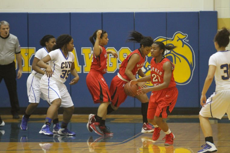 GBB Cove v Heights 70.jpg