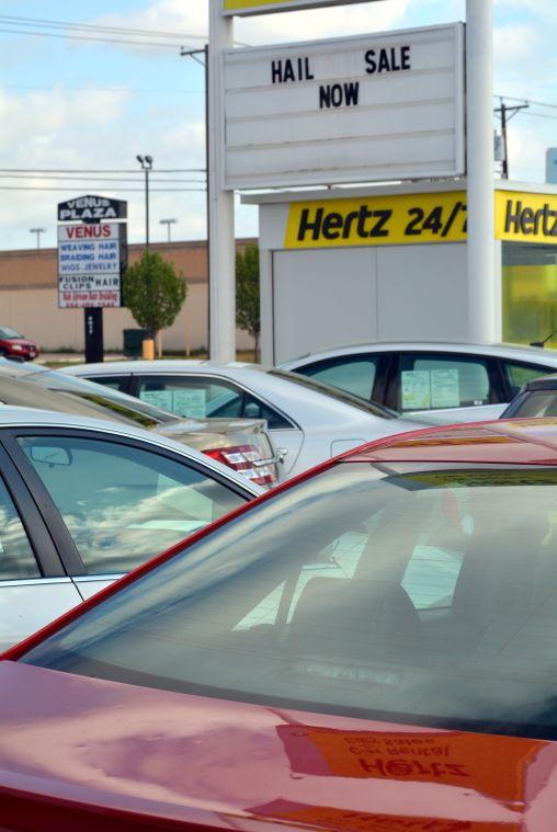 Wildart Tues Hertz 7818.jpg