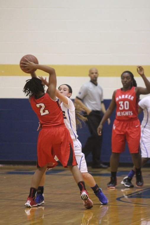 GBB Cove v Heights 27.jpg