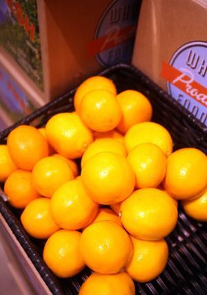 Citrus cooking