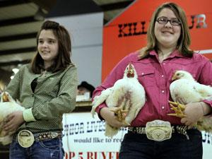 Junior livestock show wraps up, raises $155K