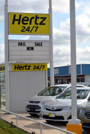 Wildart Tues Hertz 7796.jpg